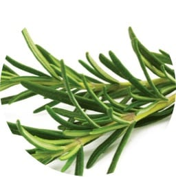 rosemary, natural anti-inflammatory, liver cleanse